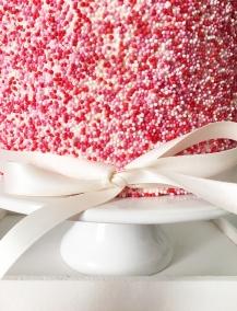 Babshower Sprinkle Cake 06