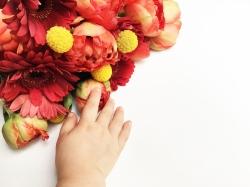 My Bloomy Days 01