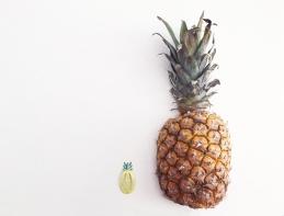 Fruit Hairclips 07