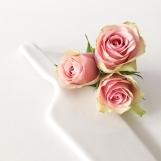 Marmorkuchen Rosen 06